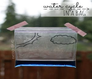 ziploc bag with water cycle drawn on outside.